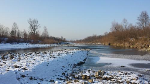 Rzeka jeszcze nie zmarzła - 6 lutego