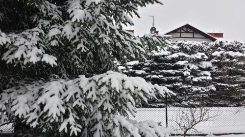 Rankiem 19 marca śnieg nadal sypie - to już ponad 20 centymetrów. Chyba szykuje się chłodna wiosna