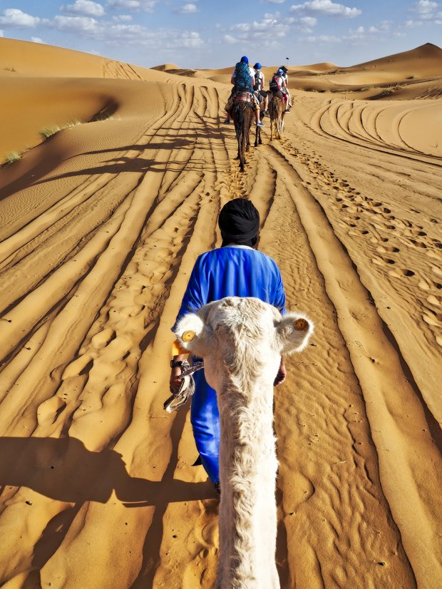 Karawana, Sahara. więcej zdjęć: www.czterykranceswiata.com