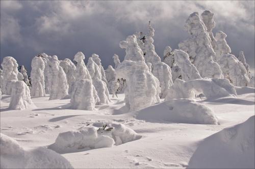 śniegowe stwory