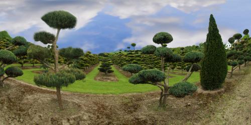 Drzewa male i duze,okragle i podluzne ... #wiosna #land #natura #przyroda