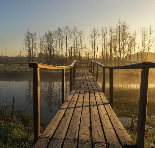 Nad rzeką Narewka