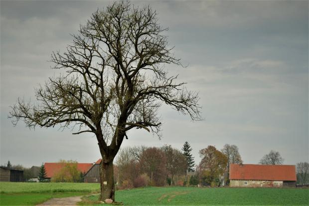 na skraju wsi