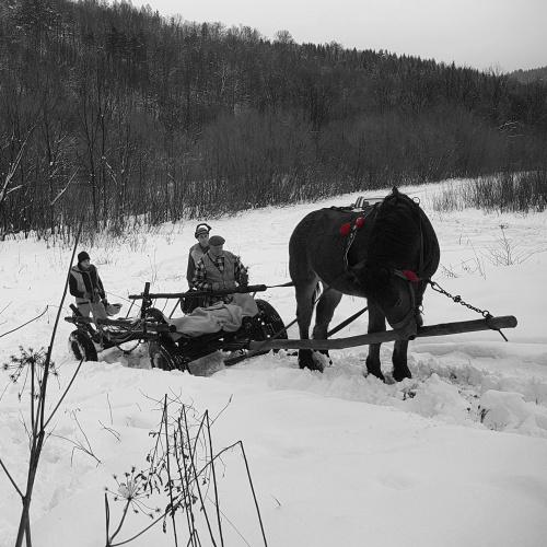 #PstrykCodzienny - całe końskie życie pod górkę...