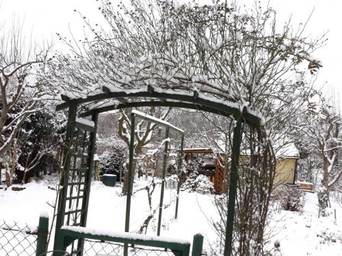 Zima_styczeń 2021