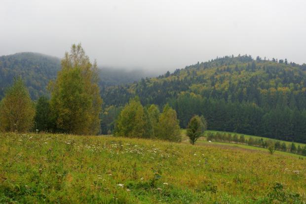W ostatni dzień bieszczadzkich wędrówek idziemy na Jasło, na dole pięknie natomiast na górze zerowa widoczność ....