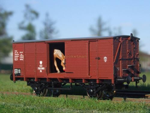 Model wagonu towarowego P.K.P. do przewozu koni. Skala 1:87 H0. Epoka II. Konwersja rocketman. #Wagon H0 #PKP