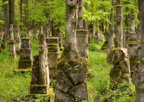 Roztocze - zapomniany cmentarz z krzyżami Bruśnieńskimi.